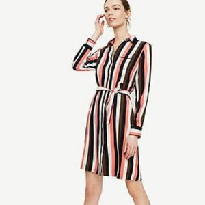 NWT Ann Taylor Stripe Piped Shirt Dress, Small